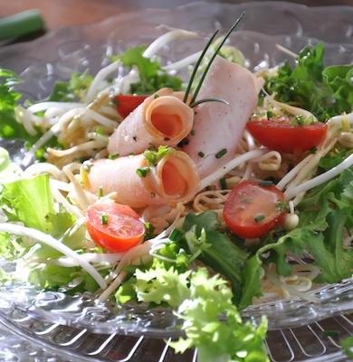 Sommerlicher Blattsalat mit Cassisdressing
